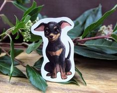 Black and Tan Chihuahua Dog on Weatherproof Glossy Sticker Paper Height: 3 Inches; Width: 2 Inches Stickers are sold individually or in packs of 3 and 10 Product specs: Brown Chihuahua, Chihuahua Dogs, Handmade Items, Handmade Gifts, Glossier Stickers, Black And Brown, Etsy Seller, Creative, Prints