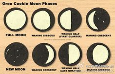 oreo cookie moon phrases