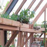 Takfotshyllor i cederträ till ditt växthusär både vackert och praktiskt. Våra hyllor är gjorda speciellet för Gabriel Ash växthus