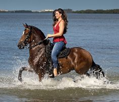 Colombian Trote y Galope mare. PATRONA DEL ENCANTO Horse Girl Photography, Equine Photography, Photography Poses, Woman Riding Horse, Riding Horses, Colombian Culture, Equestrian Chic, Big Horses, Western Riding