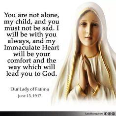 Message from Our Lady of Fatima. Catholic Beliefs, Catholic Quotes, Catholic Prayers, Religious Quotes, Catholic Healing Prayer, Rosary Quotes, Catholic Saints, Roman Catholic, Mother Mary Quotes
