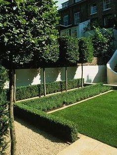 Strakke achtertuin met mooie hoge bomen achter witte schutting.                     Andre Meilink