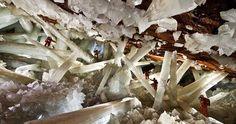 Une ancienne vie subsiste dans de grands cristaux et dans les conditions extrêmes dune mine au Mexique