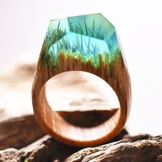 New Miniature Worlds Inside Wooden Rings Capture The Beauty Of Different Seasons