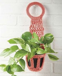 Pretty Little Plant Hangers from Leisure Arts presents crochet designs in a variety of sizes and shapes. Made using cotton medium weight yarn, designs range from a tiny wall hanger for an air plant to strappy hangers for bushy, towering, or trailing plant Metal Plant Hangers, Macrame Plant Hangers, Crochet Cord, Diy Crochet And Knitting, Crochet Plant Hanger, Crochet Wall Hangings, Little Plants, Macrame Patterns, Plant Holders