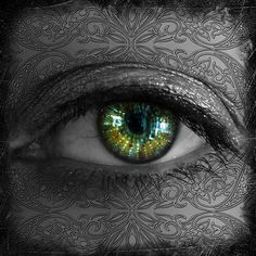 Hypnotic Visions