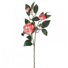 Artificial Camelia Plant Spray - Spring Summer Stem With Pale Pink Flowers Camellia Plant, Artificial Flowers, Pale Pink, Pink Flowers, Spring Summer, Ebay, Plants, Leaves, Tattoos
