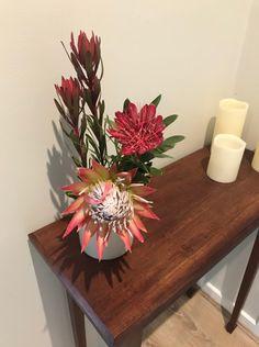 Our first proteas of the season. | Gippsland Granny