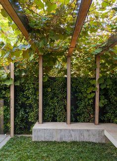 Clark Garden | Ben Scott Garden Design