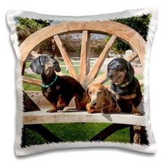 900 Dachshund Gifts Ideas Dachshund Gifts Dachshund Weenie Dogs
