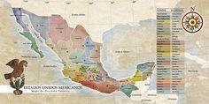 Mapa divisiones • libro de Xcaret