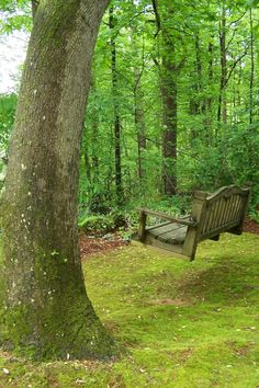 gosh this looks like our old hilltop Grayson home in our old side yard..swing among the trees..ahhh <3