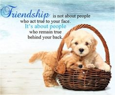 nice Best Friends Quotes: Life Sayings People Who Act True To Your Face