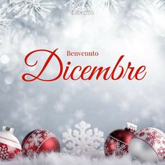 Benvenuto Dicembre Christmas Time, Christmas Bulbs, Merry Christmas, Good Morning Good Night, Day For Night, Italian Greetings, Time To Celebrate, New Years Eve Party, Christmas Pictures