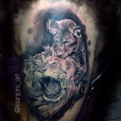Lion León cachorro Tattoo tatuajes wild