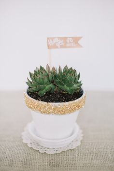 5 DIY Gifts for the Holiday Hostess – Seasons By Sarah Homemade Gifts, Diy Gifts, Host Gifts, Succulent Pots, Succulents, Gifts For Coworkers, Deco Design, Home And Deco, Flower Pots