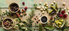 native berries, nuts & flowers low res