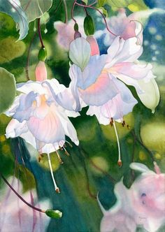 Marney Ward watercolor http://marneyward.com/ | aqu fiushias ...
