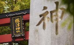 《懷舊下町谷根千漫步賞櫻、逛老街、吃妖怪大福(上)》  東京的櫻花開了,代表春天真正的到來,我和伙伴兼攝影師Syo決定一起走一趟半日賞櫻遊路線,我們選定了有著濃厚懷舊氛圍的下町谷根千做為目的地,而這次的賞櫻路線起點決定從上野車站出發,以日暮里車站為終點,這樣的路線安排其實是為了想要在傍晚的時侯拍到谷中銀座著名的夕陽美景