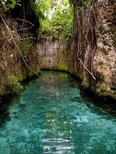 Underground rivers at Xcaret in the Mayan riviera in Mexico.  Just beautiful!