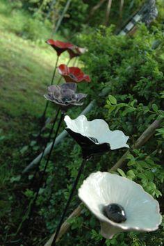 pinbloemen