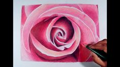 Rose Flower Drawing Tutorial by fadil