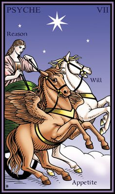 The Chariot - Annotated Tarot of the Sevenfold Mystery by Robert M. This card symbolizes one of the stages of the Fool's Journey towards self-discovery. The Fool stands for all of us. The Chariot Tarot, Fortune Telling Cards, Tarot Major Arcana, Tarot Learning, Tarot Spreads, Oracle Cards, Tarot Decks, Archetypes, Deck Of Cards