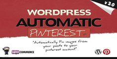 Download Pinterest Automatic Pin v3.0 – Codecanyon WordPress Plugin