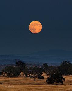Golden Moon, Sacramento, California; photo by .Jason Branz