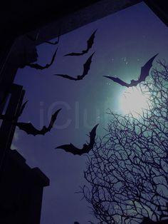 Halloween 12pcs 3D Stereoscopic Bat Wall Sticker Decal Removable Room Decoration #HALLOWEEN #BAT #DECORATION