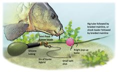 How to cast further and catch more