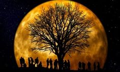 The November 2016 Super Moon And All Its Glory2016 Super Moons- 16 October, 14 November & 14 December 2016More Pins Like This At FOSTERGINGER @ Pinterest