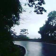 """And we are here! Go Goaaàa #goa😍 #goa🌴 #goainrains #travelgoals #traveltales #lifeisgood #travel #travels #travelblogger #thepeachsparrowcaptures #india #indiantravelsquad #indiatraveldiaries #india_gram #india_clicks #india_ig #happysoul"" by @thepeachsparrow (thepeachsparrow). #turismo #instalife #ilove #madeinitaly #italytravel #tour #passportready #instavacation #natgeotravel #mytinyatlas #traveldeeper #travelawesome #travelstoke #travelwriter #lonelyplanet #instalive #ilovetravel…"