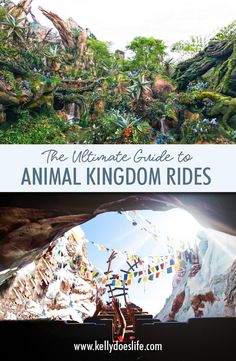 Complete Guide to Animal Kingdom Rides - Kelly Does Life Are you planning a family vacation to Walt Disney World? Here is a complete guide to all Animal Kingdom rides and attractions! Walt Disney World Rides, Disney World Vacation Planning, Disney Planning, Disney World Resorts, Disney Vacations, Trip Planning, Family Vacations, Cruise Vacation, Disney World Tips And Tricks
