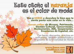 Este otoño el naranja es el color de moda