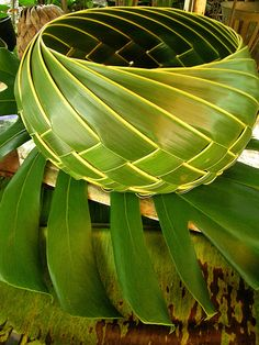 Lauhala (leaf) bowl. Leaves from the Hala tree (Pandanus tectorius). Picture by Angela Sevin