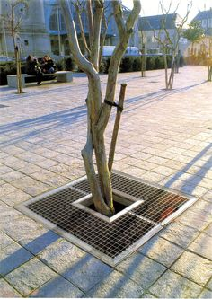 DMD TREE GRATE - Designer Tree grates / Tree grilles from Concept Urbain ✓ all information ✓ high-resolution images ✓ CADs ✓ catalogues ✓. Woodworking Guide, Custom Woodworking, Woodworking Projects Plans, Urban Furniture, Street Furniture, Furniture Design, Garden Paving, Garden Planters, Autocad
