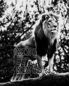 King of Kings....