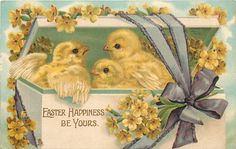 Vintage Easter images - printable Tuck postcard image - chicks in box