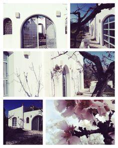 Puglia casa campo Modesto e Antonia de Angelis architetti