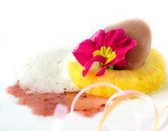 Smoothie - Molecular Gastronomy Painkiller Recipe, Food Science, Molecular Gastronomy, Chef Recipes, Edible Art, Homemade Food, Plated Desserts, Food Presentation, Food Design