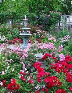 Gorgeous Rose cottage garden landscaping design ideas