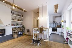 Panorama view of my living room shelving & kitchen spaces. Kitty running through.