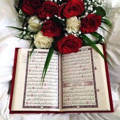 Beautiful Qur'an and Roses