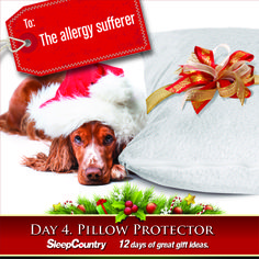 Day 4 - Pillow Protector