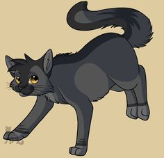 33 Best Warrior Cat Pictures! (Mostly of Thunderclan) images