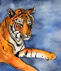 Image result for watercolor of a tiger