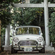 It's a bouncy little fella Photo & Owner: Love it Share it Like it Thanks. Classic Mini, Classic Cars, Austin Mini, Mini Car, Mini Coopers, New Engine, Minis, Life, Vintage Cars