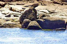 Cambados Galice Espagne 180 - Illa de Arousa