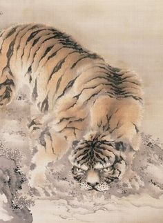 Tiger by Gan Ku, late 18th century. Gan Ku was famous for his tiger paintings. It is believed he worked from skins since Japanese artists would not have seen a real tiger